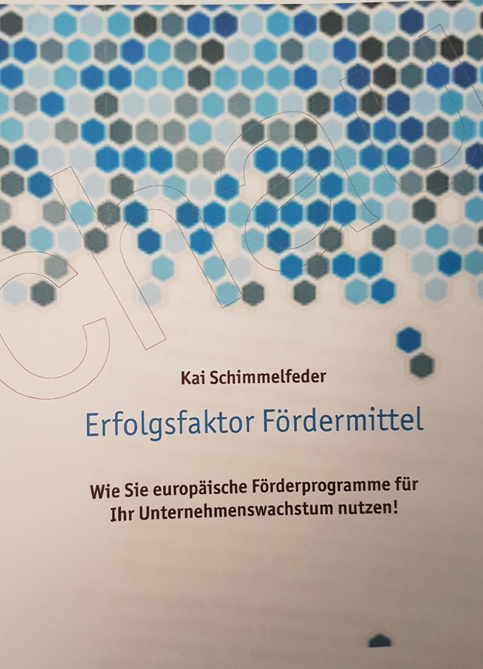 Expert Marketplace -  Kai Schimmelfeder - Erfolgsfaktor Fördermittel