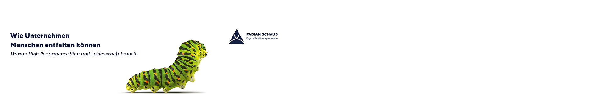 Expert Marketplace - Fabian Schaub